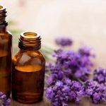 Interesantes propiedades ansiolíticas de algunos aceites esenciales
