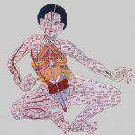 Plantas medicinales de uso frecuente en la medicina tibetana