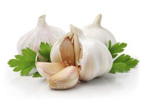 Alllium sativum colesterol ldl