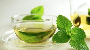infusion plantas medicinales te
